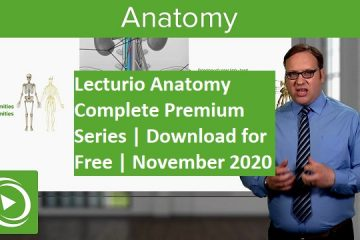 Lecturio Anatomy Complete Series Free Download Now